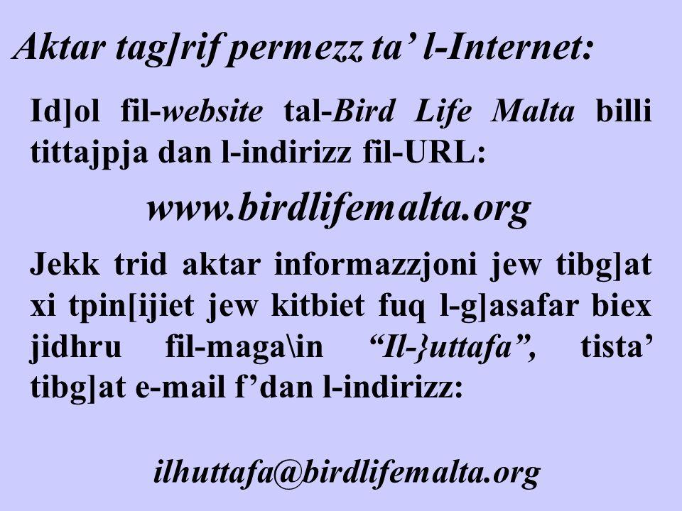www.birdlifemalta.org Aktar tag]rif permezz ta' l-Internet: